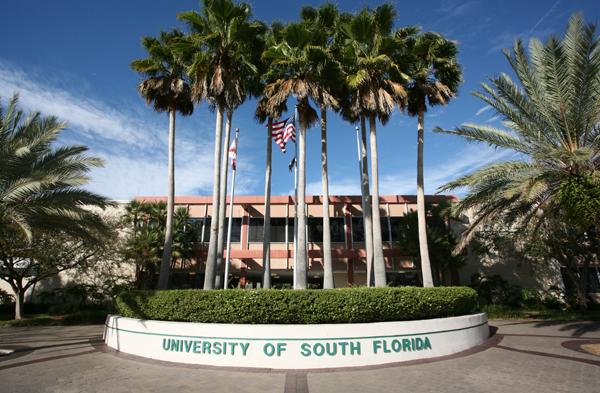 university of south florida tampa,fl